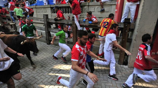Fiesta de la Pamplona