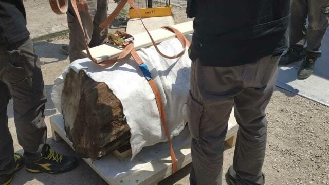 Statuia uriaşă a unui războinic dac, găsită în Roma. De ce a fost îngropată sub pământ - Imaginea 2