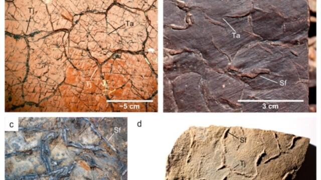 Imaginile care ar putea demonstra existența vieții pe Marte. Explicația cercetătorilor - Imaginea 4