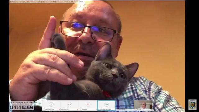 Senatorul PNL Fenechiu, filmat cu un coniac și o pisică la dezbaterile Legii carantinării - Imaginea 2