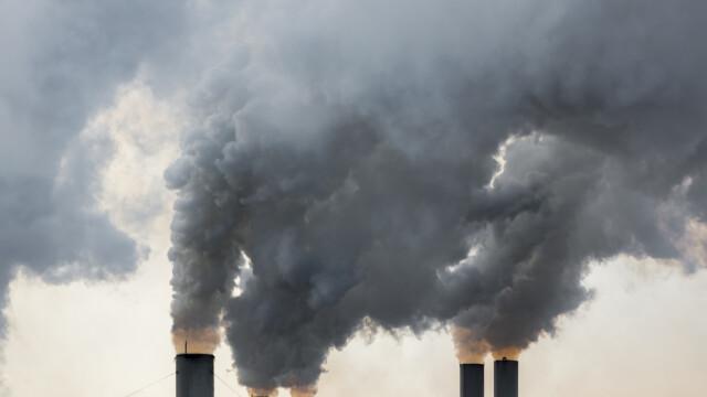 Legea mirosurilor se aplică începând de joi. Ce prevede și care sunt amenzile. Cadrul legal, incomplet