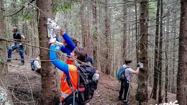 Cu ajutorul voluntarilor, în Țara Făgărașului potecile redevin primitoare - Imaginea 2