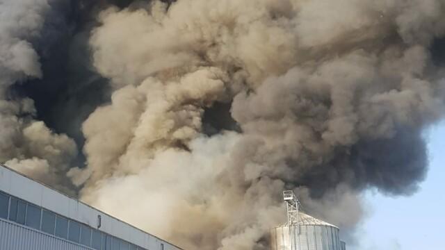 Incendiu puternic la 2 hale din Bragadiru. A fost emis un mesaj RO-Alert - Imaginea 5