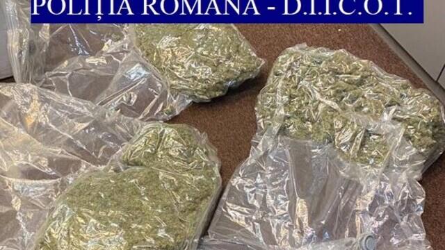 Traficanţi de droguri din București prinşi în flagrant. De unde ridicaseră câteva kilograme de cannabis - Imaginea 2