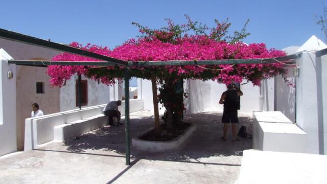 Creta si Santorini: mare, sare, vant, soare adormit - Imaginea 15