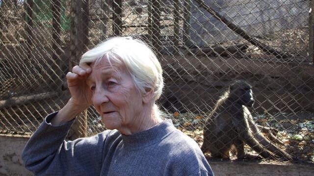 Asa ceva nu se uita! Vacanta de voluntar la crescut maimute in Africa - Imaginea 5