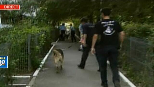 VIDEO: Cainii politiei alearga dupa un hot de masini, impuscat in picior de politisti