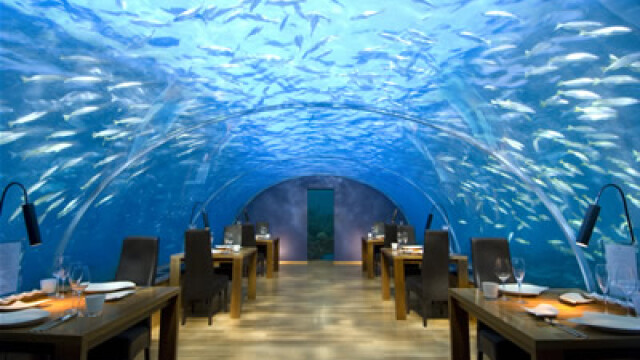 restaurant maldive