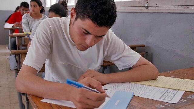 student, bacalaureat, elev