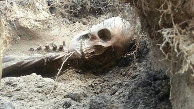 Ce a patit un cuplu dupa ce a gasit un schelet in gradina. \