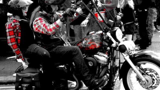 Harley Davidson - 6