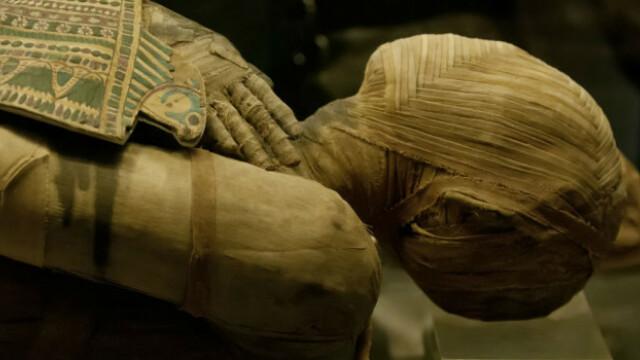 descoperire extraodinara dupa ce mai multe mumii