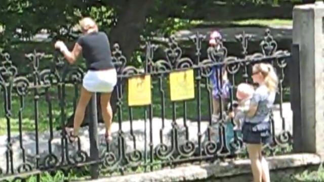 sar gardul la parcul dendrariu din Chisinau