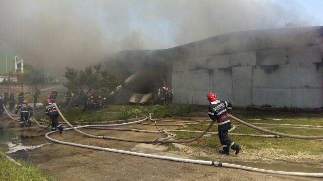 Incendiu la un depozit de produse chimice din Bucuresti. A fost nevoie de 25 de masini de pompieri ca sa il stinga - Imaginea 1