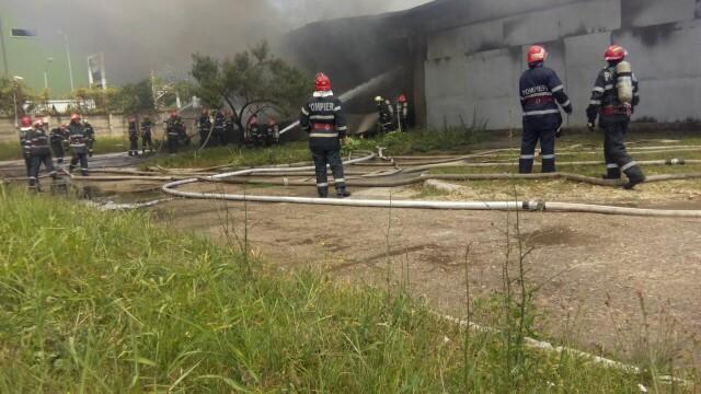 Incendiu la un depozit de produse chimice din Bucuresti. A fost nevoie de 25 de masini de pompieri ca sa il stinga - Imaginea 3