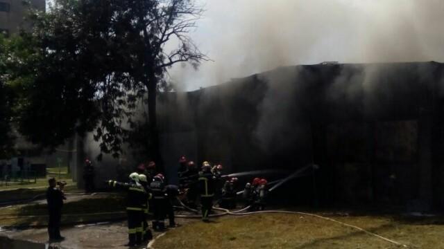 Incendiu la un depozit de produse chimice din Bucuresti. A fost nevoie de 25 de masini de pompieri ca sa il stinga - Imaginea 5