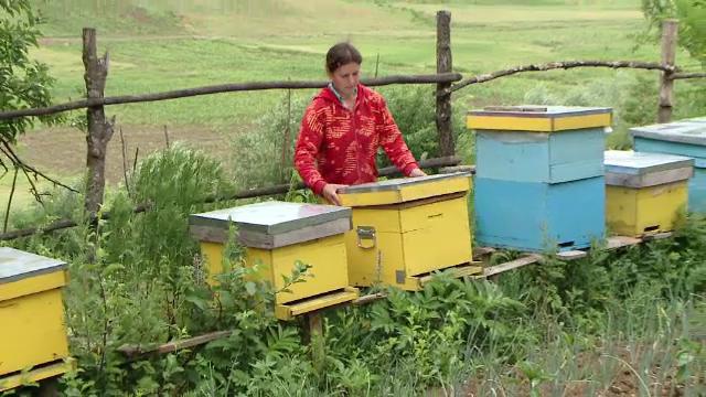 Proiectul prin care familiile sarace din Vaslui si-au construit mici afaceri. Cati bani au ajuns sa castige pe an