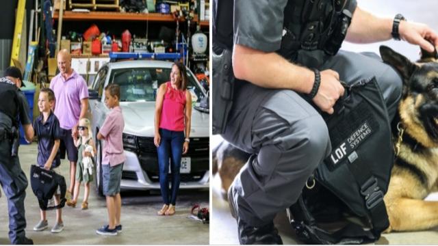 Suma uriașă strânsă de un băiețel pentru a le cumpăra câinilor polițiști veste antiglonț