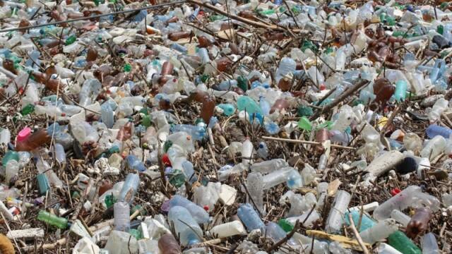 Poluare pe Dunăre. Video cu tonele de deșeuri strânse la Galați, după inundații - Imaginea 4