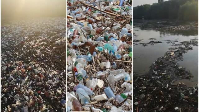 Poluare pe Dunăre. Video cu tonele de deșeuri strânse la Galați, după inundații - Imaginea 1
