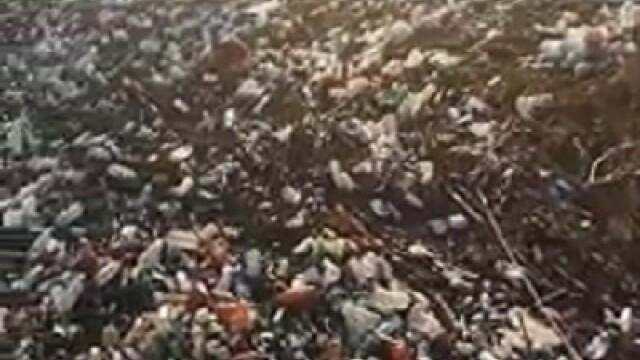 Poluare pe Dunăre. Video cu tonele de deșeuri strânse la Galați, după inundații - Imaginea 6