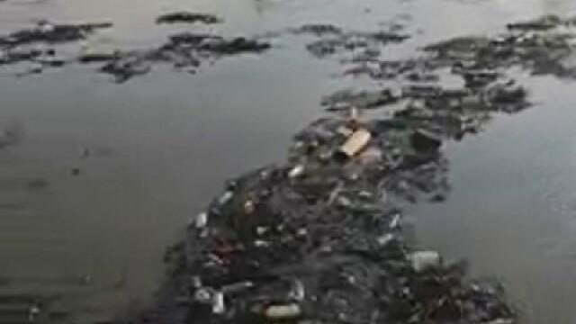 Poluare pe Dunăre. Video cu tonele de deșeuri strânse la Galați, după inundații - Imaginea 7