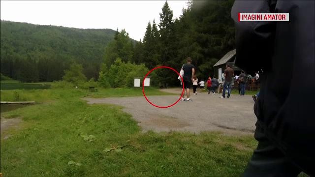 O ursoaică s-a năpustit asupra unei femei din Ungaria, la Lacul Sfânta Ana