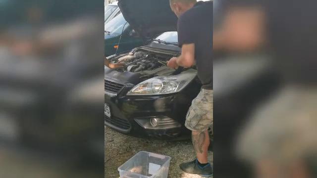 Descoperirea terifiantă făcută de un șofer la motorul mașinii sale