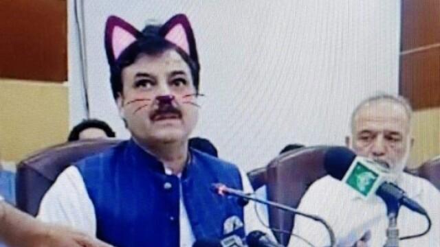 Politicieni cu mustăți și urechi de pisică, în timpul unei ședințe. Momentul, transmis live - Imaginea 5