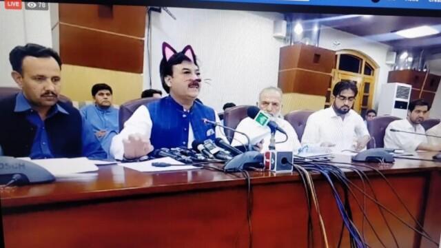 Politicieni cu mustăți și urechi de pisică, în timpul unei ședințe. Momentul, transmis live - Imaginea 1
