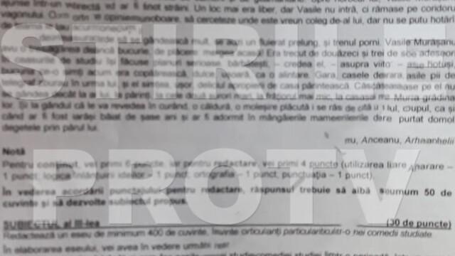 SUBIECTE Bacalaureat 2020 Română. Avem subiectele la limba și literatura română. Baremul de corectare - Imaginea 23