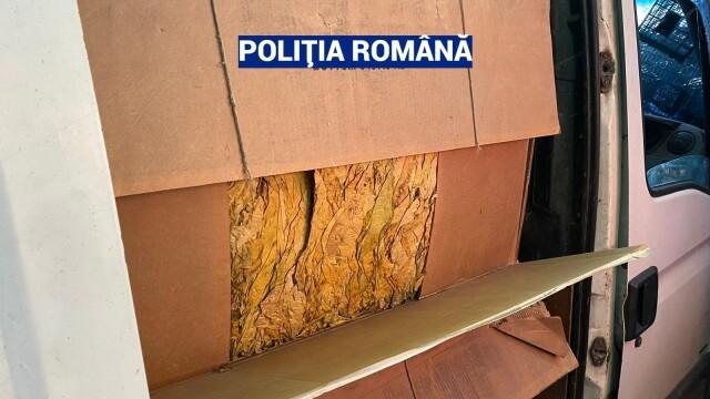 Captură record de tutun vândut ilegal, în urma unor percheziții în București și mai multe județe - Imaginea 4