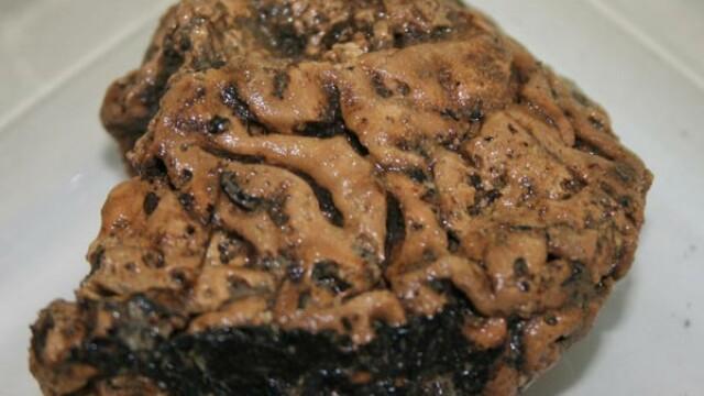 FOTO. Creier vechi de 2.500 de ani: s-a conservat perfect in noroi