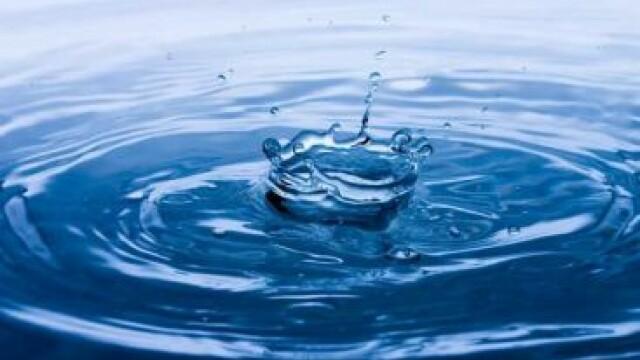 """""""Suntem insetati pentru ca ne este foame"""".Cum ajunge o persoana sa consume 5.000 litri apa pe zi"""