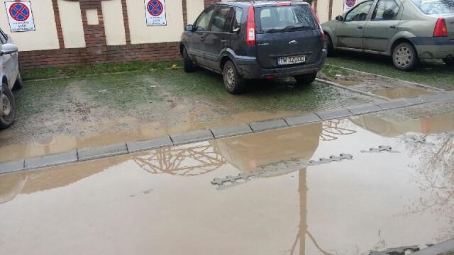 Parcarile ecologice din Timisoara seamana mai degraba cu niste mlastini. FOTO