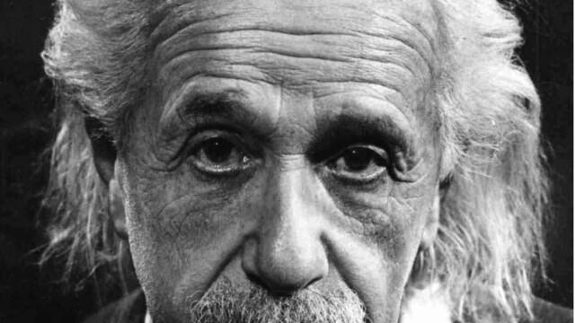 Omida care seamana cu Albert Einstein. Ce a descoperit o femeie din SUA
