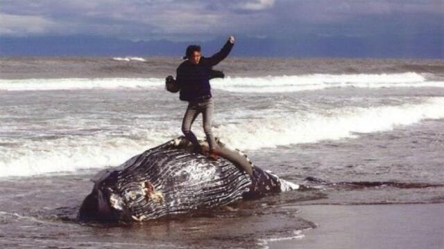 Fotografie tulburatoare. Ce s-a intamplat dupa ce acest tanar a fost pozat deasupra unei balene moarte