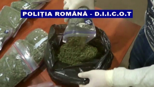 captura marijuana