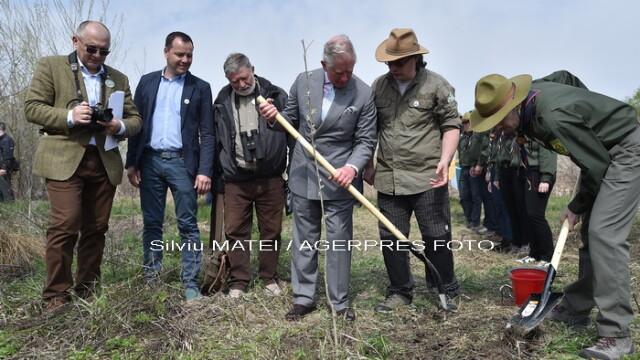A admirat incondeierea oualor si a plantat un pom. Cum a decurs a doua zi din vizita Printului Charles in Romania - Imaginea 9