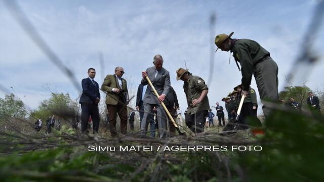 A admirat incondeierea oualor si a plantat un pom. Cum a decurs a doua zi din vizita Printului Charles in Romania - Imaginea 10