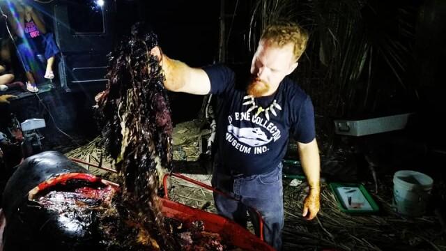 Ce se afla în stomacul unei balene găsită moartă pe o plajă din Filipine. FOTO - Imaginea 7