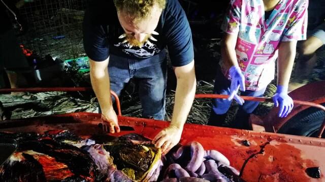 Ce se afla în stomacul unei balene găsită moartă pe o plajă din Filipine. FOTO - Imaginea 14