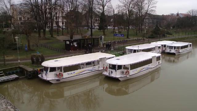 Surpriză pentru femeile din Timișoara, cu ocazia zilei de 8 martie. Ce cadou au primit