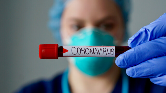 LIVE UPDATE. Alte 2 cazuri de îmbolnăviri cu coronavirus în România, numărul total a ajuns la 17 - Imaginea 11