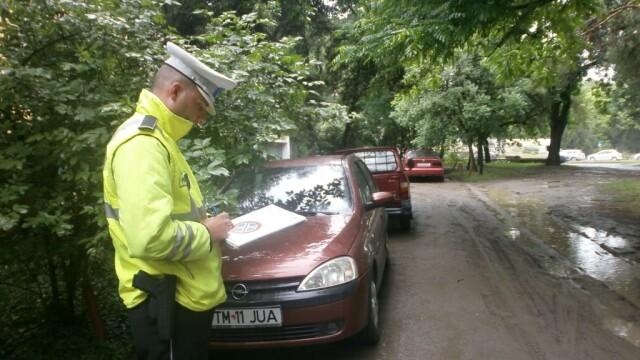 Cativa soferi au transformat un parc din Timisoara in parcare pentru masini. FOTO