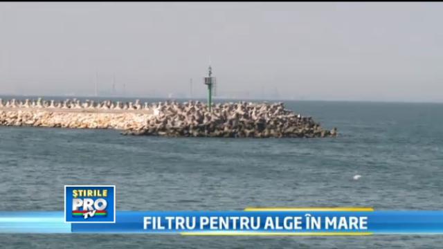 Proiectul care va schimba fata litoralului romanesc. Noua metoda pentru purificarea apei Marii Negre