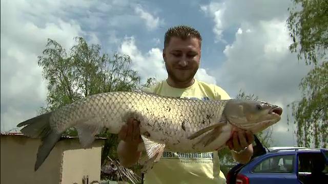 Au dat marea pe pescuitul in lacurile de langa Bucuresti. Pretul pentru o zi de relaxare in oazele de langa oras