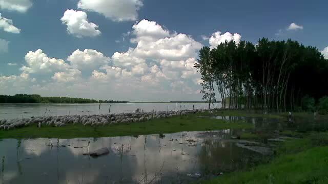 Viitura pe Dunarea