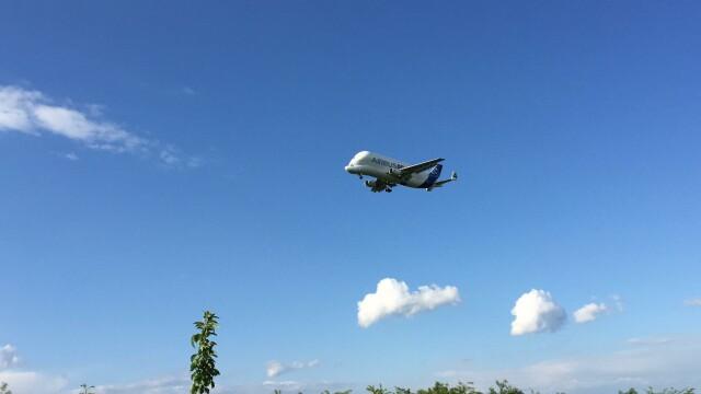 Unul dintre cele mai mari avioane din lume a ajuns in Romania. Imagini in premiera cu Airbus Beluga aterizand pe Otopeni