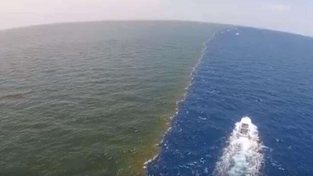 Golful Mexicului